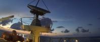 Wild Caribe: peligro bajo las aguas